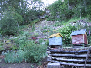 Ülle Michelsoni aed Naagel (9)